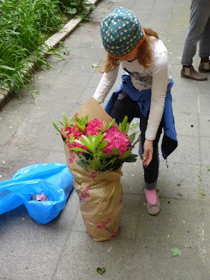 Kind packt Pflanze aus