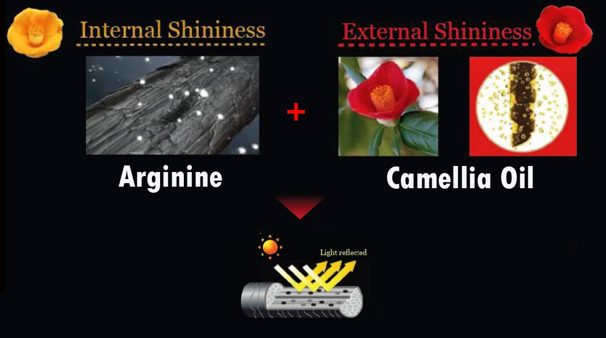 April 2015 Shini Lola Travel Beauty Lifestyle Tsubaki Wiring Diagram Why Named As It Means Camellia Flower In Japanese Is The Only Brand That Has Camelia Oil Its Ingredient And There 2 Countries