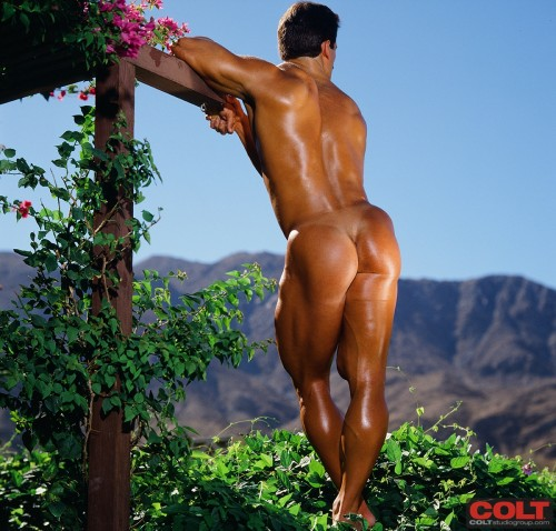 Seems Male bodybuilders posing naked