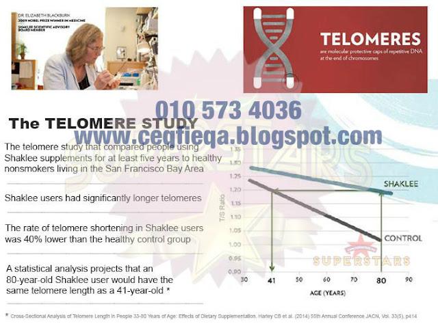 vivix dan telomere