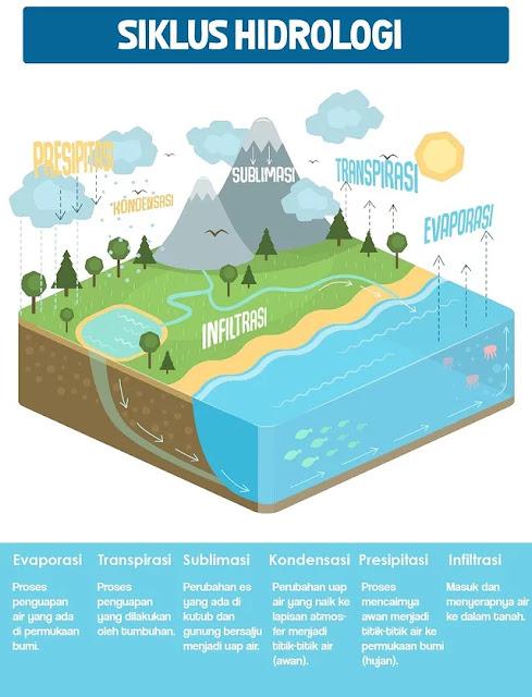 Proses Pembuatan Garam dari Air Laut, Begini Langkah
