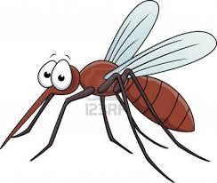 Anti Nyamuk Paling Manjur