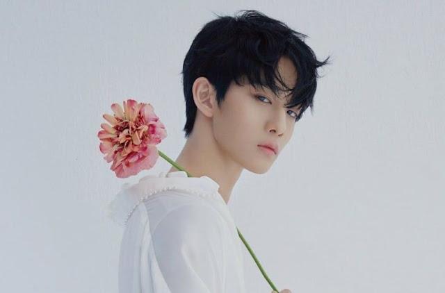 Bae Jin Young Mengenang Kebersamaan Wanna One dan Rencana Masa Depannya