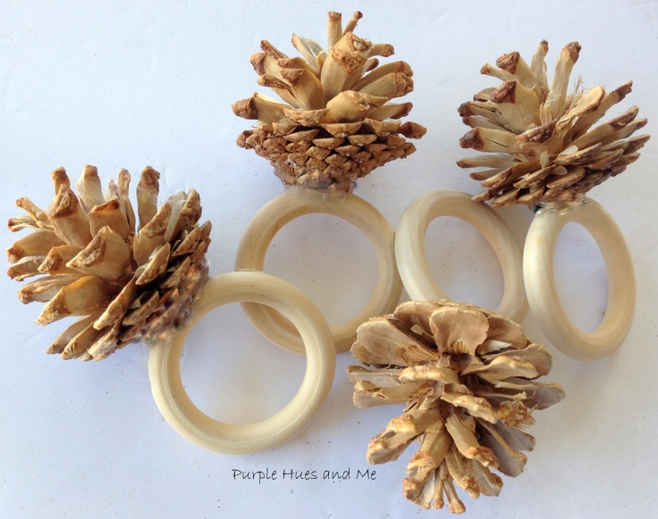 Purple Hues And Me Bleached Pinecones Napkin Rings And More