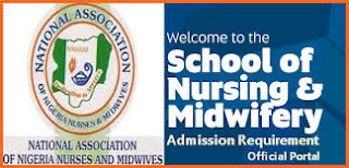 Admission Requirement For Nursing In Nigeria Institution