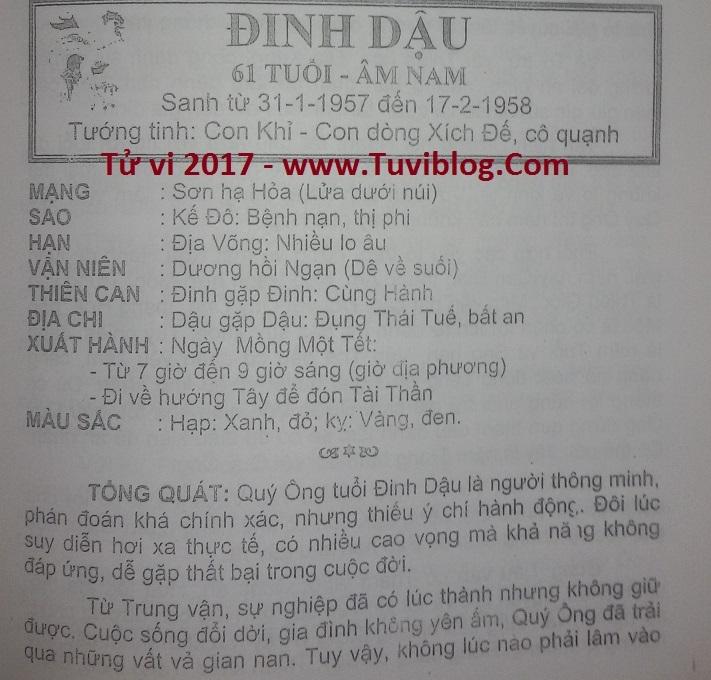 Tu vi Dinh Dau 2017