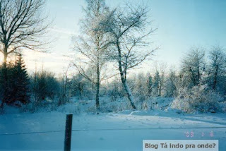 bosques da região de Jönköping