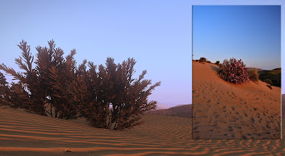 composite of sand-dunes in Limnos (and Arma III, Altis)