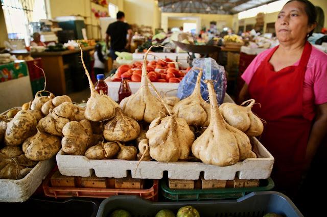 jicama, valladolid market, mexico