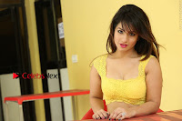 Cute Telugu Actress Shunaya Solanki High Definition Spicy Pos in Yellow Top and Skirt  0562.JPG