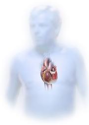 Prosedur Operasi Jantung Bocor