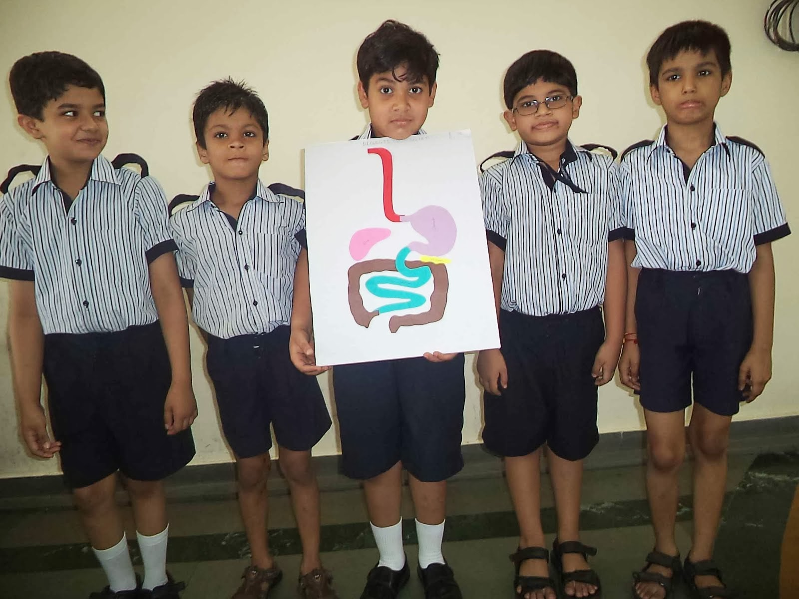 The Rustomjee Cambridge Diaries Grade 3 Science To