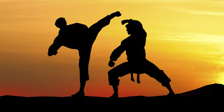 Fighting Style in Mixed Martial Arts MMA