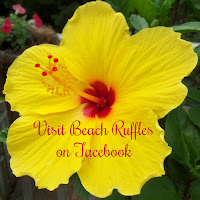 Beach Ruffles facebook