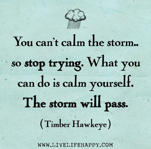Calm Quotes: You Can't Calm The Storm... So Stop Trying. What You Can