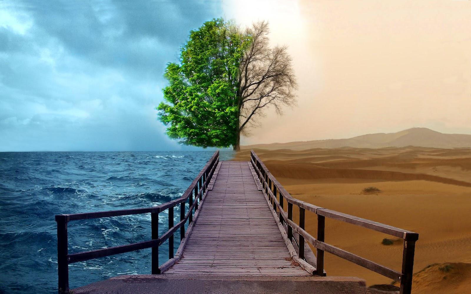 wallpapers hd desktop wallpapers free online desktop backgrounds