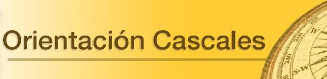 https://orientacascales.wordpress.com/tutores/
