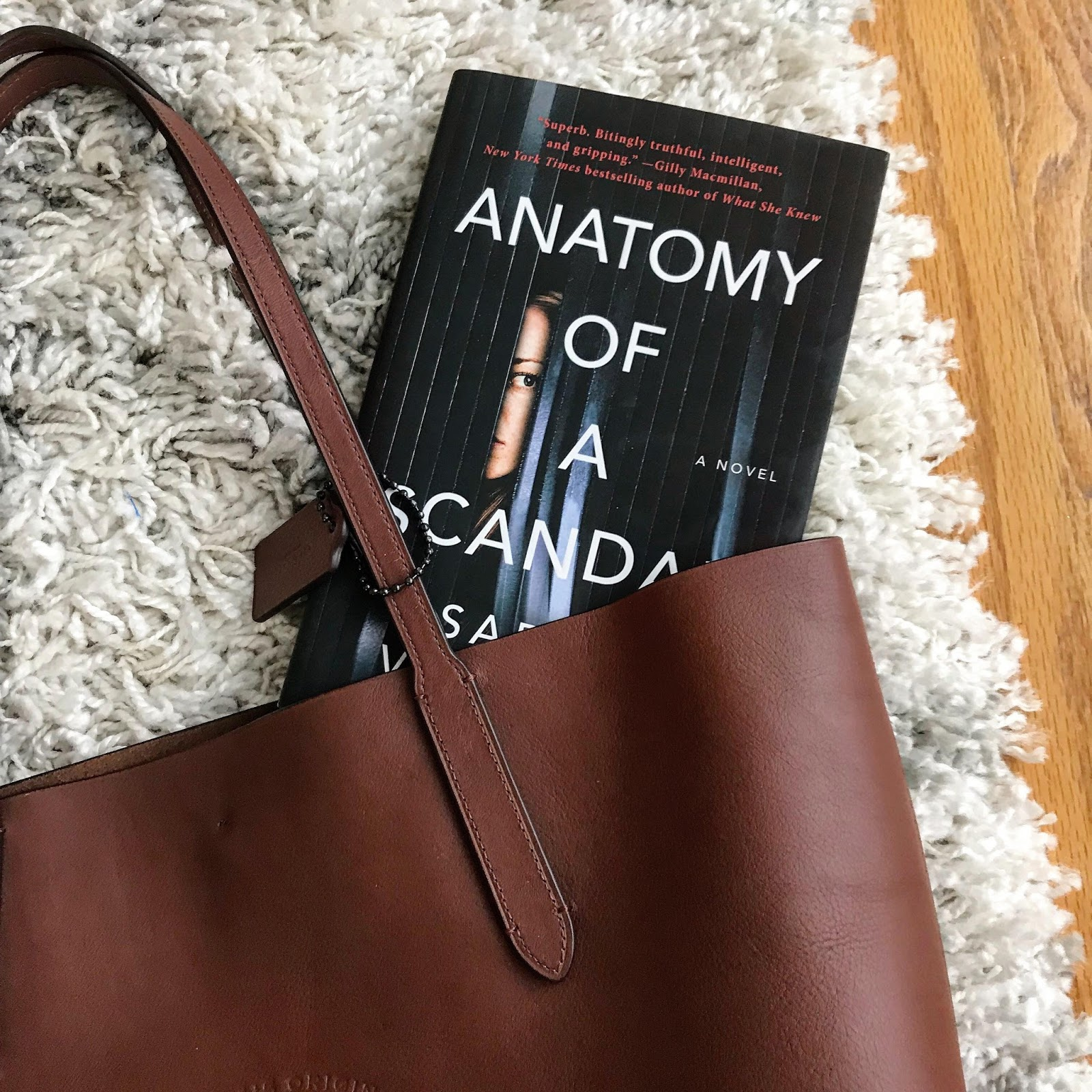 Book Review: Anatomy of a Scandal - That\'s What She Read