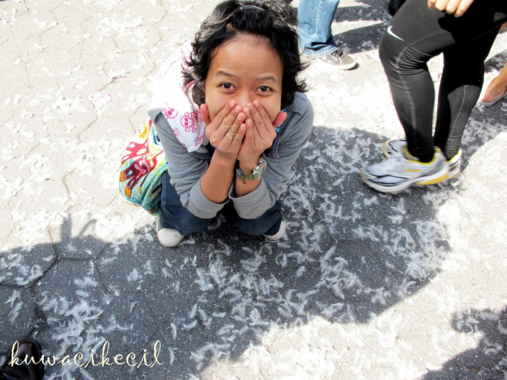 kuwacikecil: looked at the ground .. and see what i found
