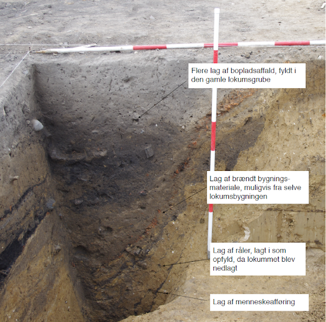 1,000-year-old Viking toilet uncovered in Denmark