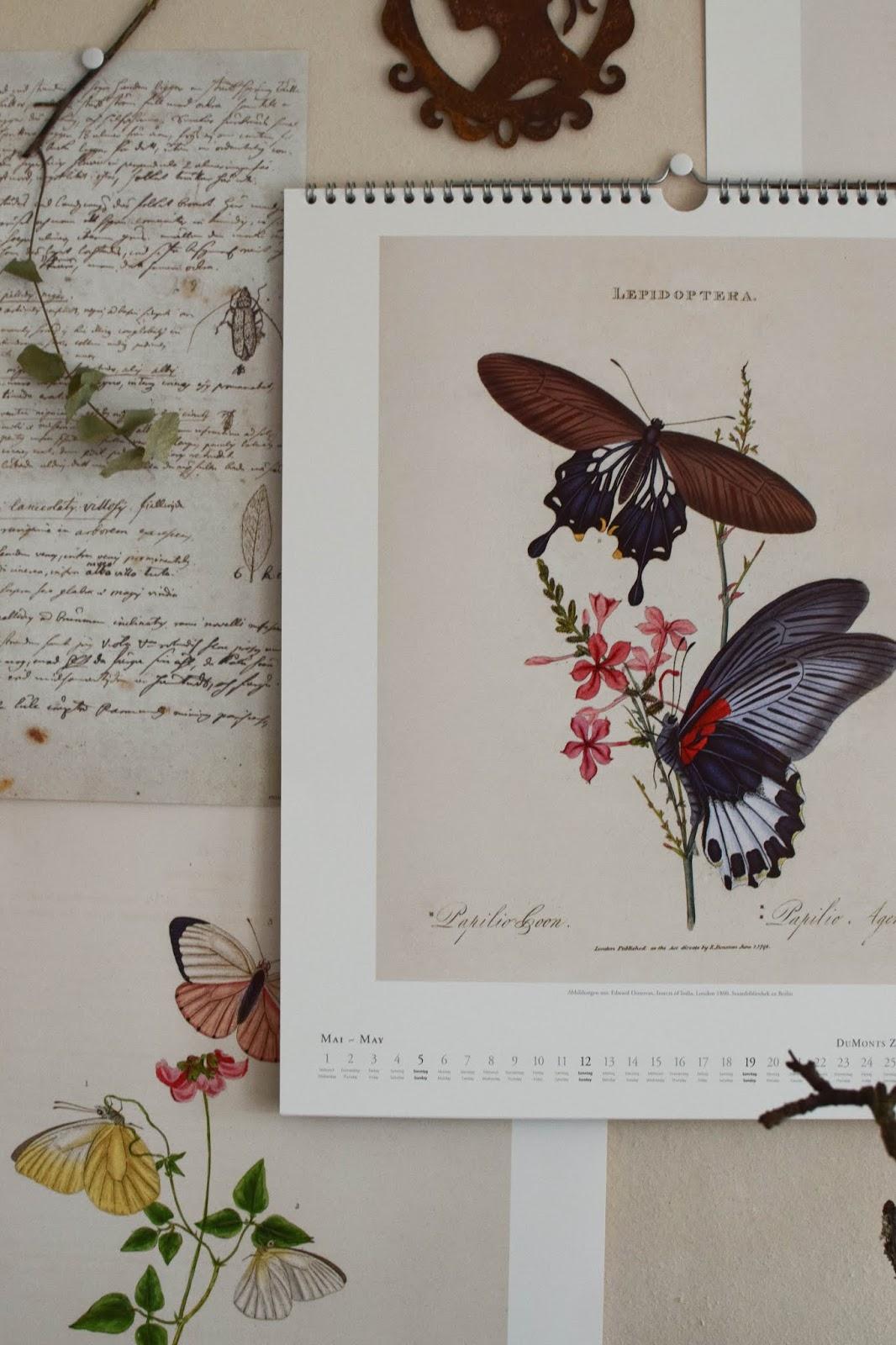 Kalender 2019 mit botanischen Zeichnungen Drucke Poster Deko Dekoidee Wanddeko von DUMONTs Zoologisches Kabinett