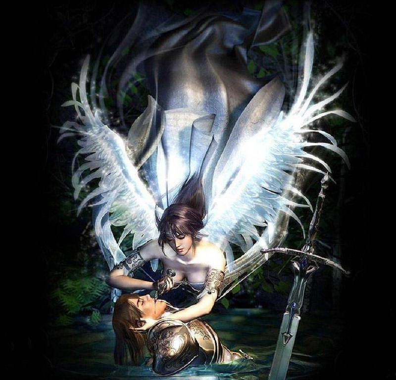 Mi anges mi demons half angel half devil 2