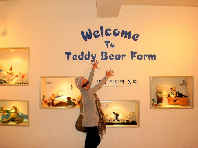 Teddy Bear Farm Korea