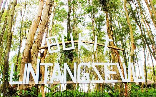Bukit Lintang Sewu Bantul Yogyakarta
