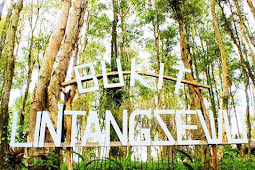 Wisata Bukit Lintang Sewu Bantul Yogyakarta