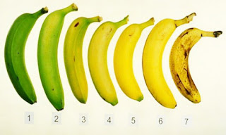 This Powerful Reason Is That You Must Eat Banana Every Day