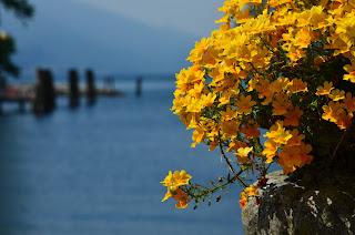 Nad jeziorem Garda. Italia