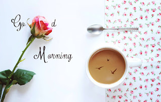 Romantic Good Morning Rose Flower and Tea Image for Husband
