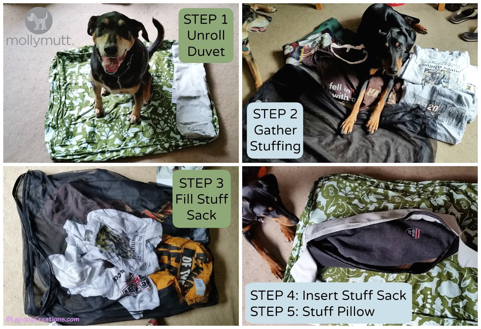 lapdog creations: #mollymutt - the dog bed loveddogs and dog