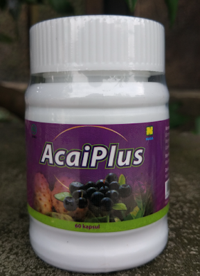acai plus nasa jogja