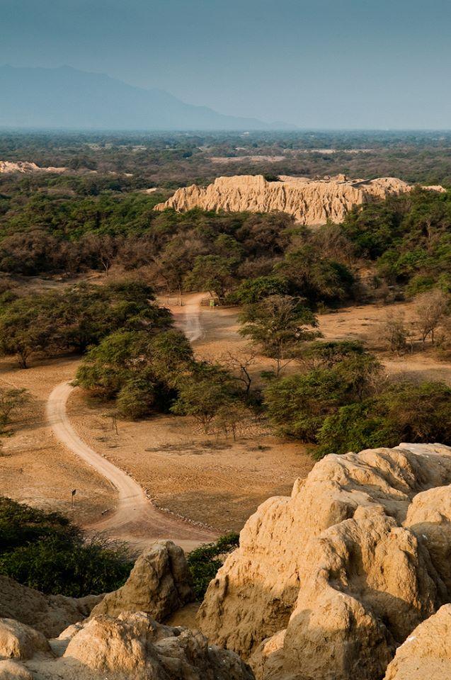 Complejo Arqueológico Sicán (Batán Grande) - Pómac