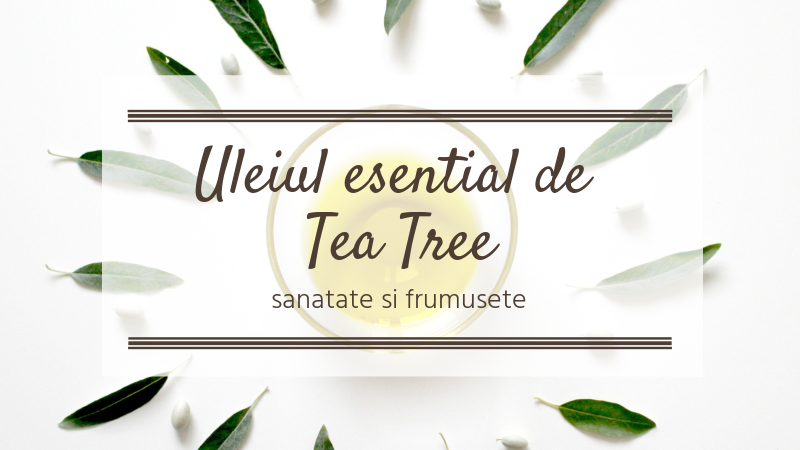 Uleiul esential de Tea Tree - Beneficii