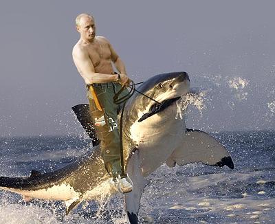 to Vladislav Surkov  the Kremlin s first deputy chief of staff  Putin    Vladimir Putin Hunting Tiger