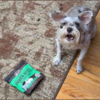 Merrick Power Bites Dog Treat Review