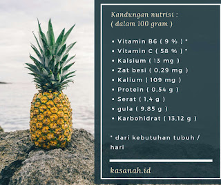 kandungan nutrisi buah nanas