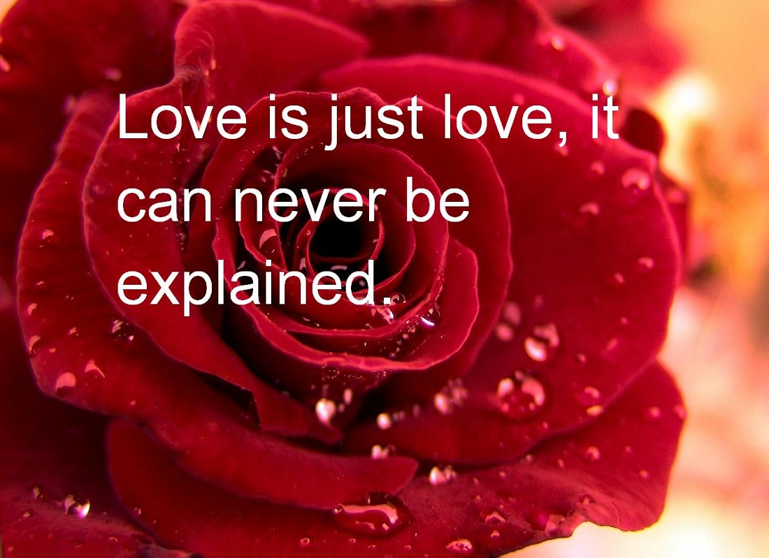 Valentines Quotes For Her Superhappy Valentines Day Quotes For Her  Quotes Wishes Images