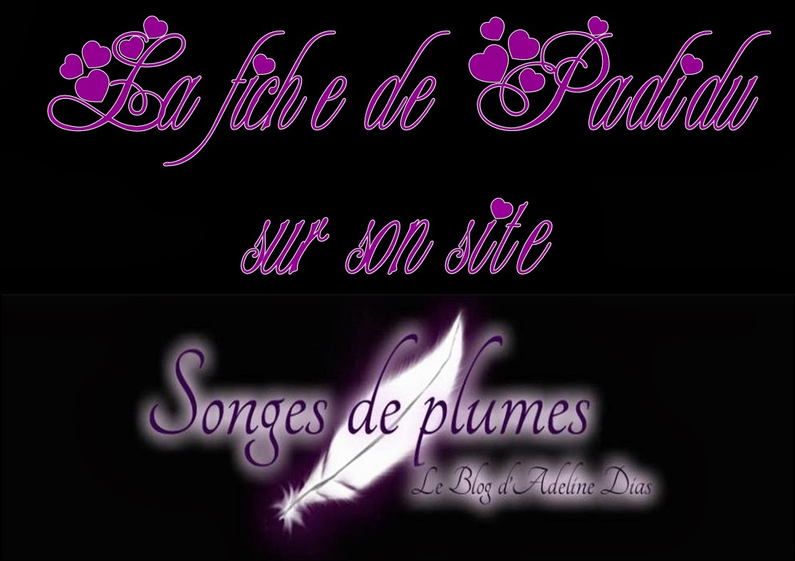 http://www.songesdeplumes.fr/le-chasseur-de-legendes/