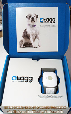 Tagg - The Pet Tracker (Unboxing) photo credit by tales of a wandering youkai