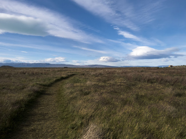2 week Patagonia Itinerary: Path through the grass at Laguna Nimez Reserve in El Calafate Argentina