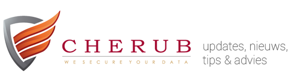CHERUB Data Security & Recuperatie