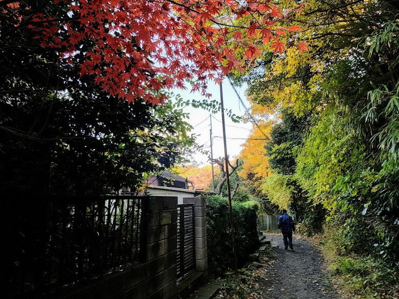 壽福寺附近的小徑