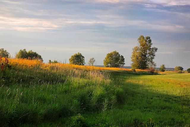 луг поле чернигов