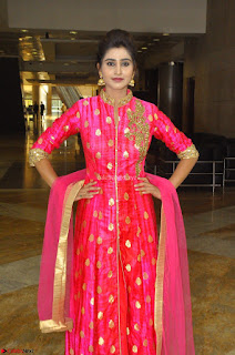 Shamili in Pink Anarkali Dress 11.JPG