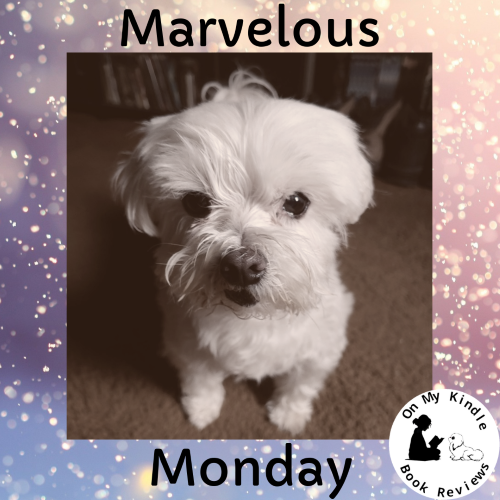 Marvelous Monday with Lexi: Feb 18th Edition!