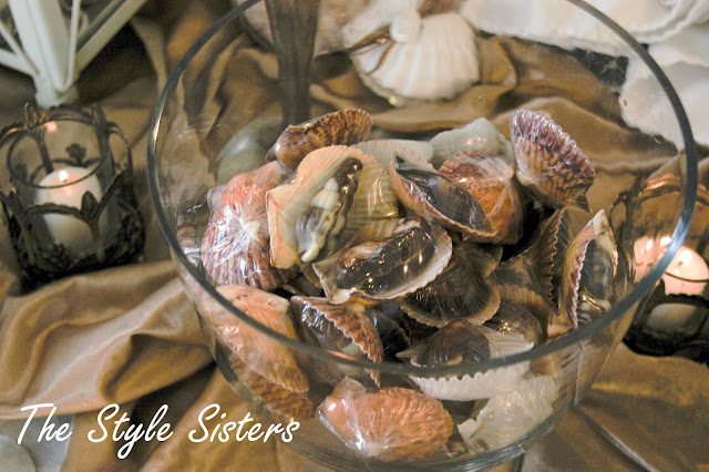 sea shell chocolates