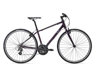 Stolen Bicyle - Giant Alight 3